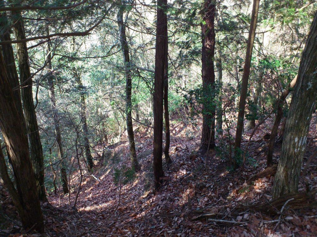 上臈落とし手前の畝状竪堀群