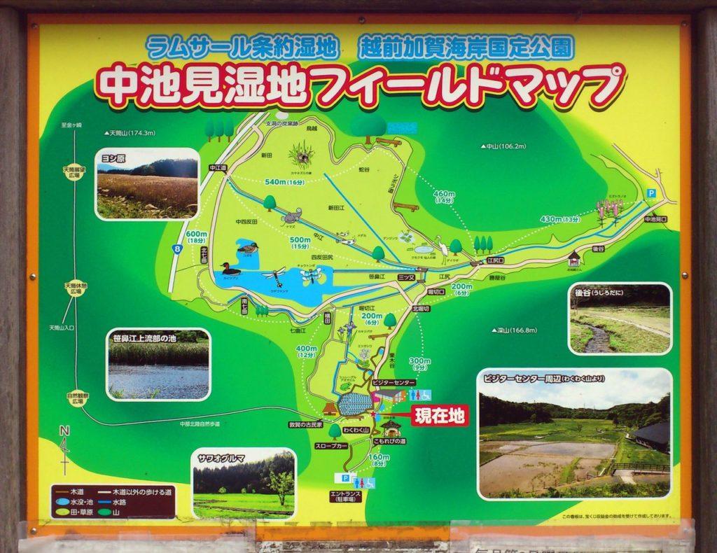 中池見湿地フィールドマップ
