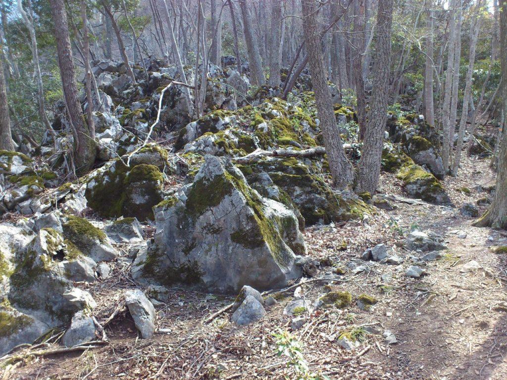 竜宮山の石灰岩の岩場