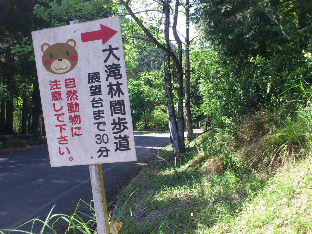 大滝林間歩道の出口