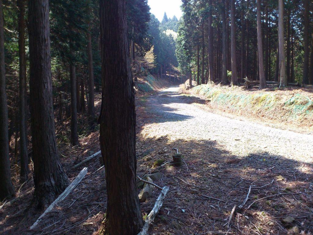 下土林道と合流