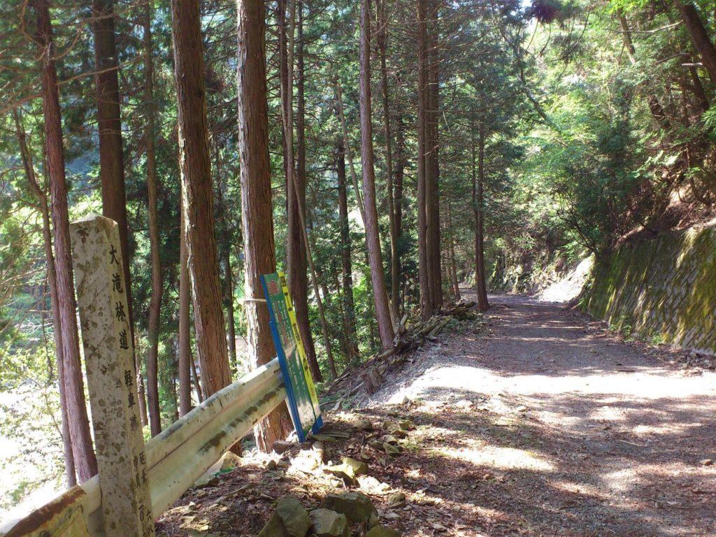 大滝林道から祖父谷林道へ