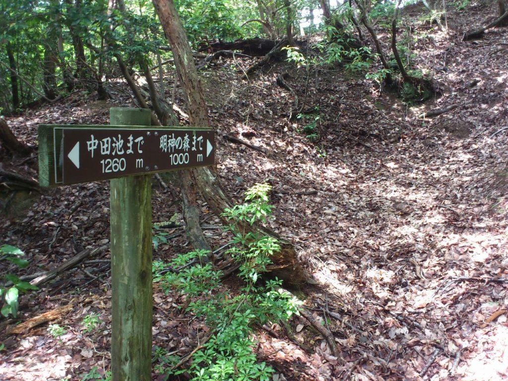 明神の森まで 1000メートル