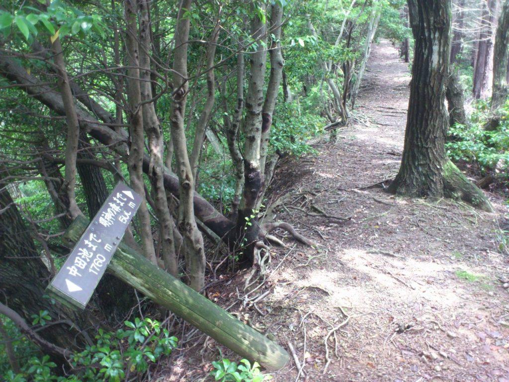 明神の森まで 500メートル