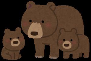 クマの親子