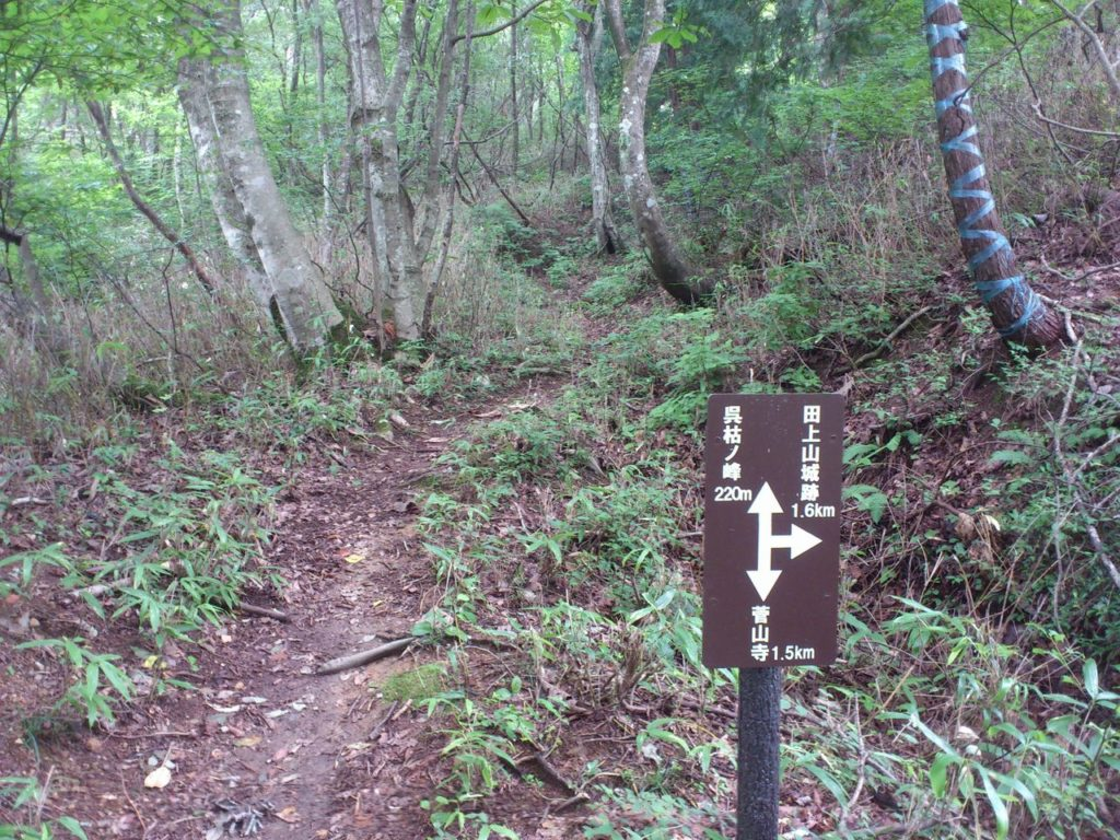 呉枯ノ峰と田上山砦跡との分岐点