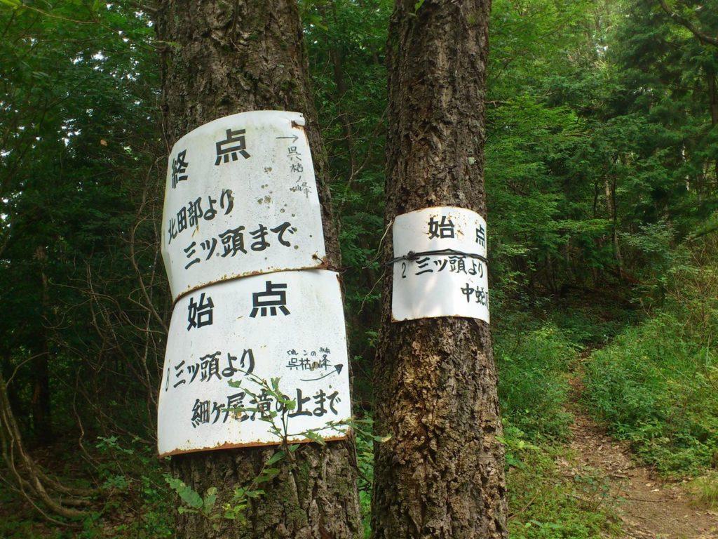 木の幹にコース案内板