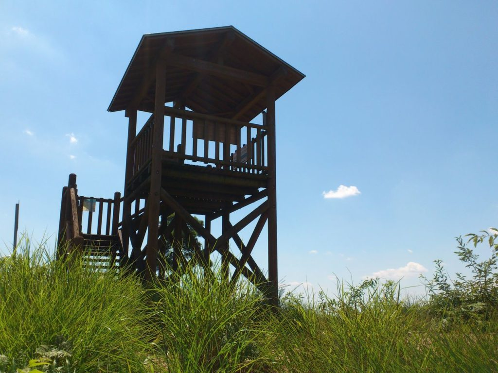 城山展望台の櫓