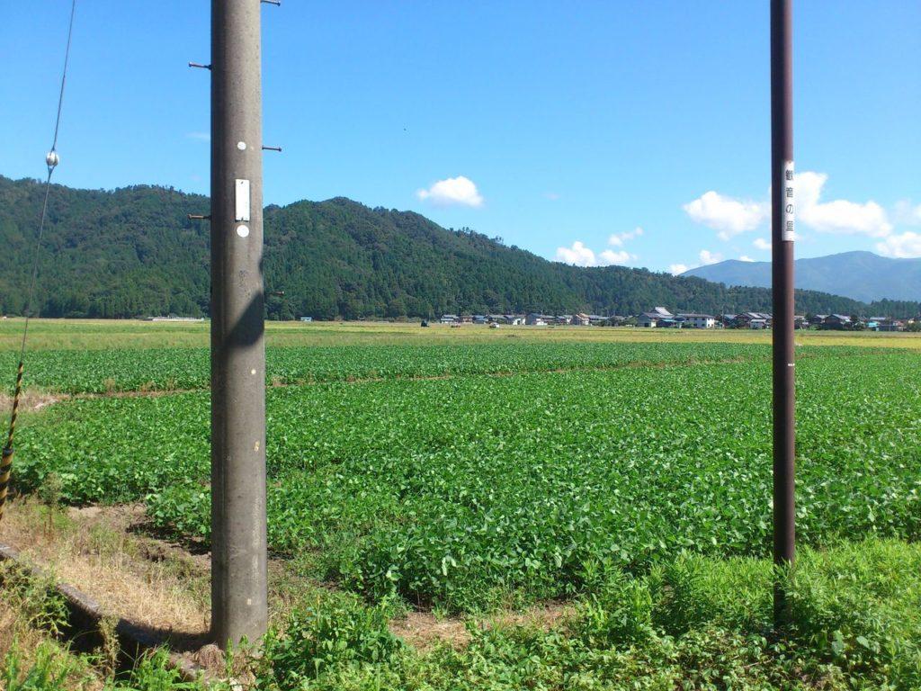 西野水道駐車場から磯野山