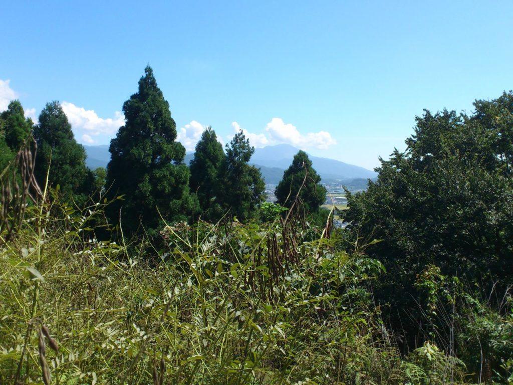 磯野山展望台から伊吹山