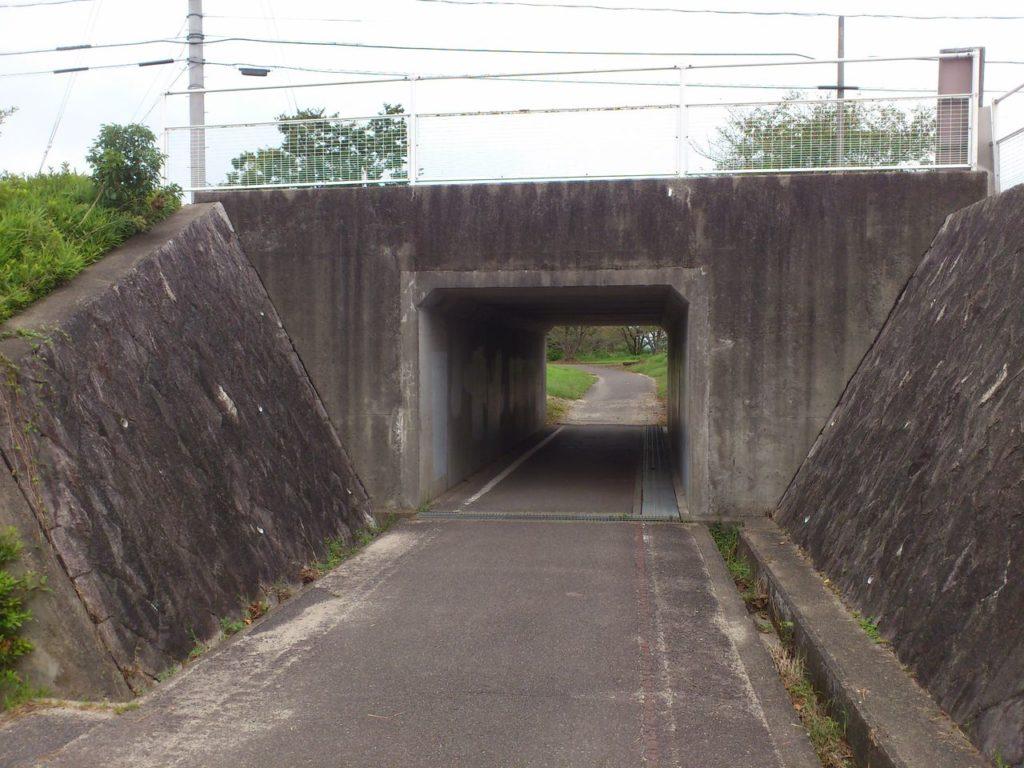桜見台へのトンネル