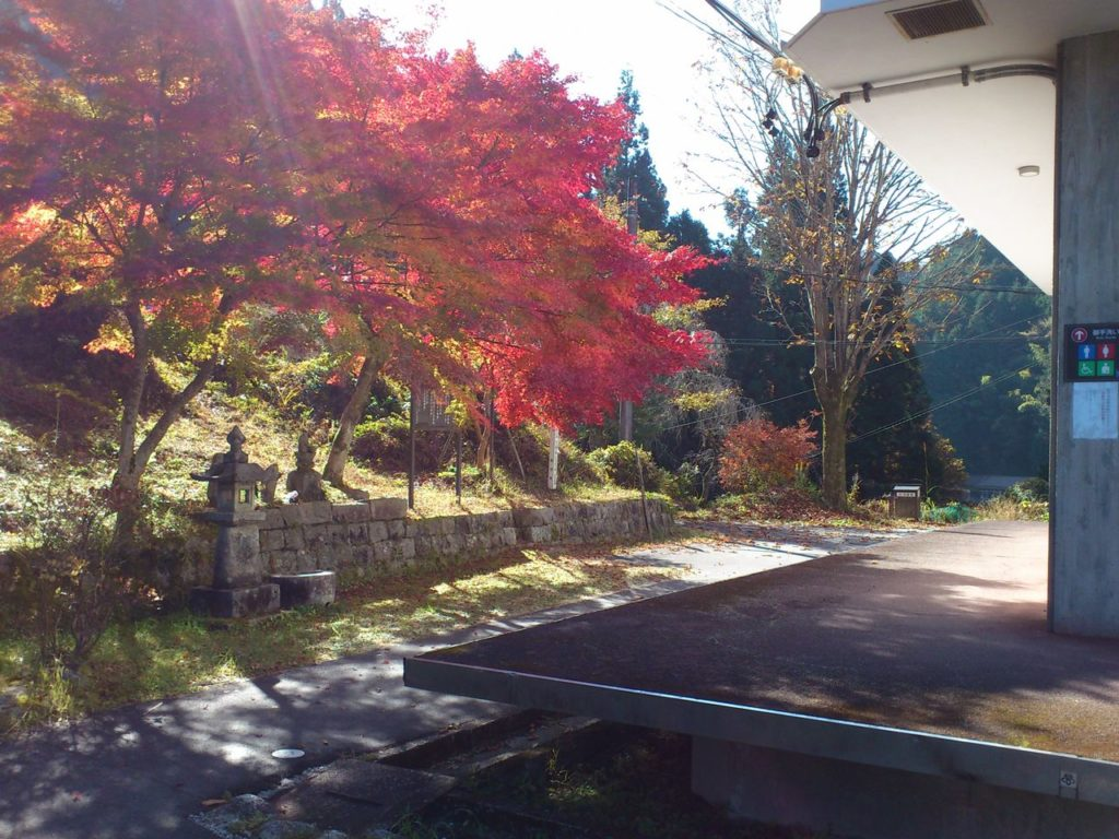 岩村歴史資料館横の紅葉