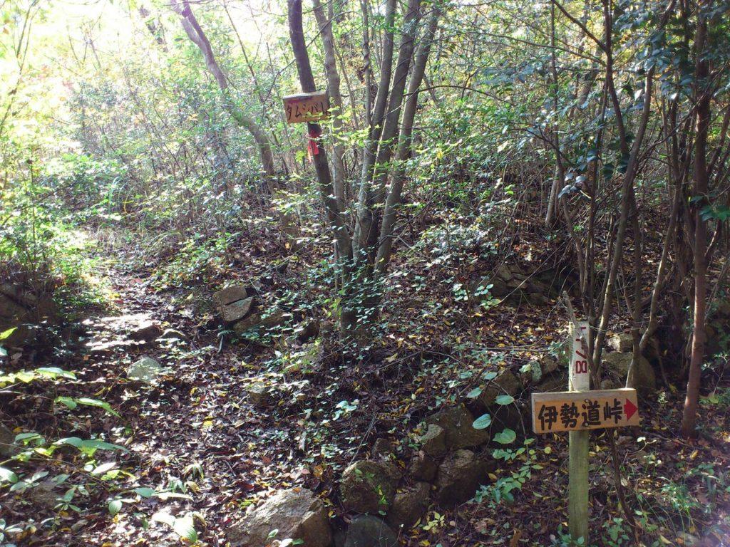 タムシバ山登山口