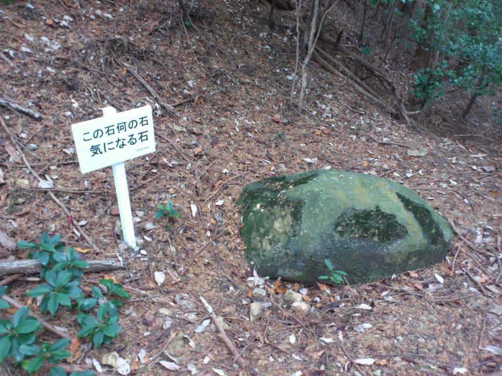 この石 何の石 気になる石