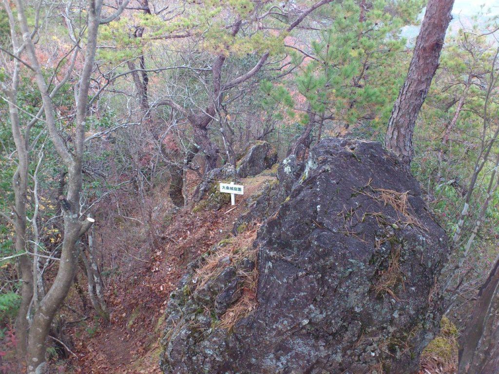 大桑城庭園(山頂側から)