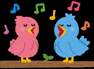 歌う小鳥のペア