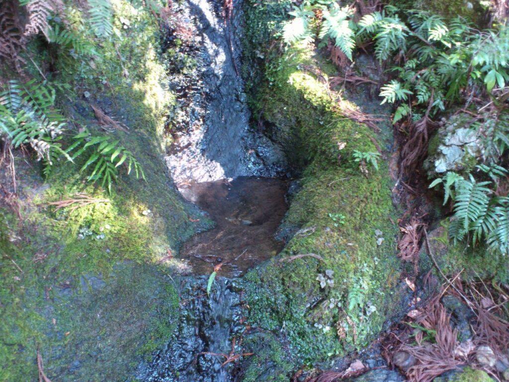 西洞の水飲み場