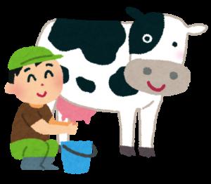 乳牛の乳搾り